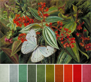 june 2014 - Marianne North - Trees Laden with Parasites and Epiphytes in a Brazilian Garden-1